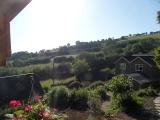 dcm_piggery_garden.jpg